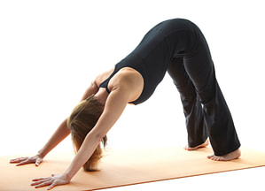Adho Mukha Svanasana, Downward Facing Dog Pose