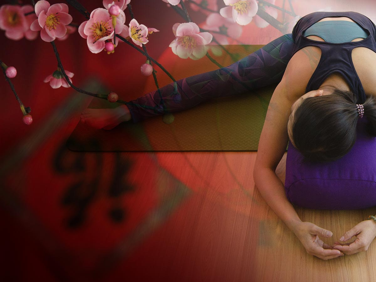 An evening of Yin yoga to Restorative yoga, Yoga Nidra and Guzheng Music